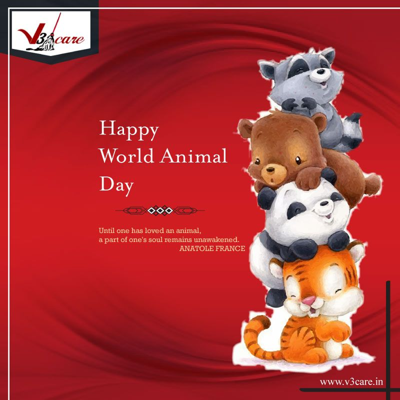 worldanimalday Animalday2018 V3Care Cleaningservices