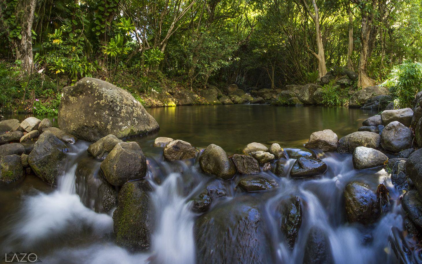 Limahuli Stream/Cold Pond. Dylan Lazo photographer. | Kauai ...