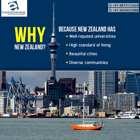 Need Another Reason To Choose New Zealand Your Study Destination For Student Visa Contact Mr Pankaj Ex Visa Officer Ph Immigration New Zealand Overseas