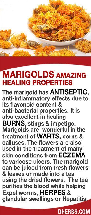 how to tell if impetigo is healing
