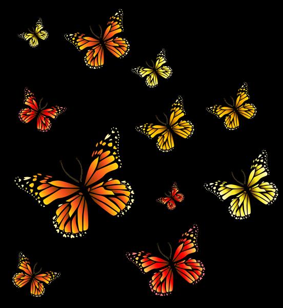 butterflies png image fairy garden graphics pinterest