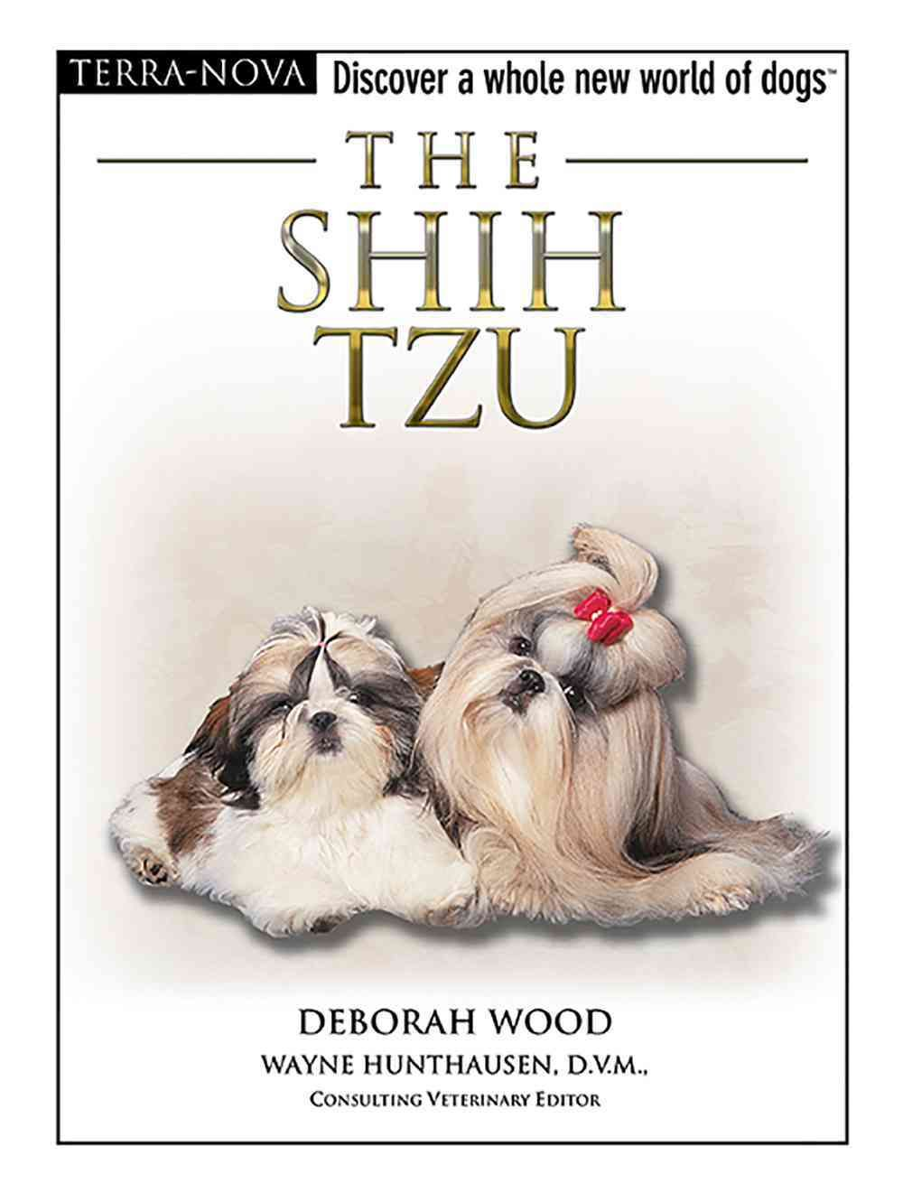 The Shih Tzu Lucy Dog Buddies Dogs Shih Tzu Shih Tzu Dog