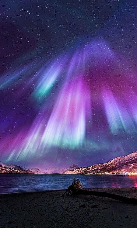 The Aurora Borealis Northern Lights The Aurora Australis