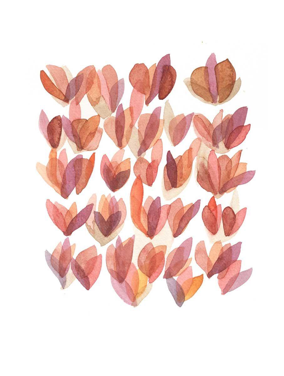 rose petals / louise van terheijden.