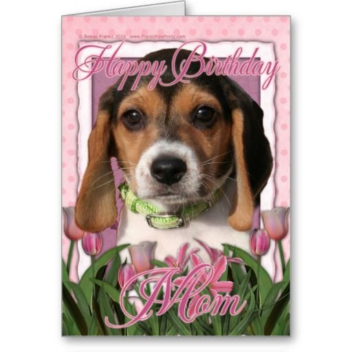 Happy Birthday Pink Tulips Beagle Puppy Card Pink Tulips