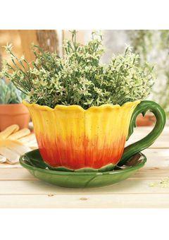 Ideeli Gardening Greats Sale With Images Teacup Gardens Sunflower Garden Planters