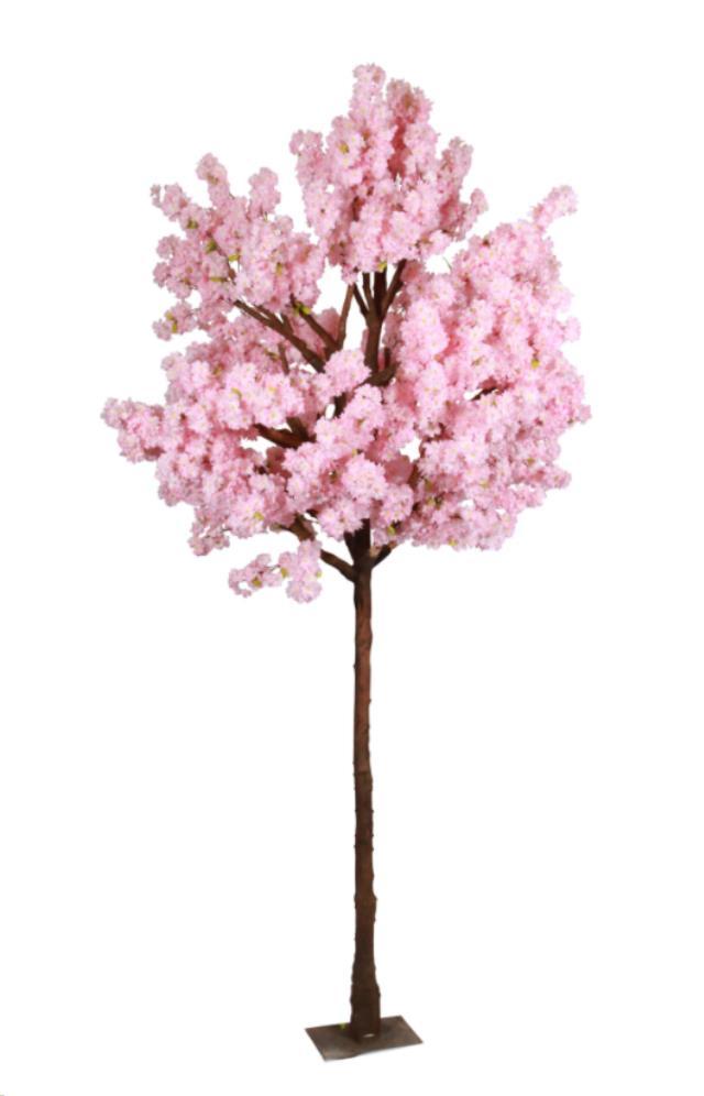 Pink Cherry Blossom Tree Rentals Calgary Ab Where To Rent Pink Cherry Blossom Tree In Calgary Ba Pink Cherry Blossom Tree Cherry Blossom Tree Cherry Blossom