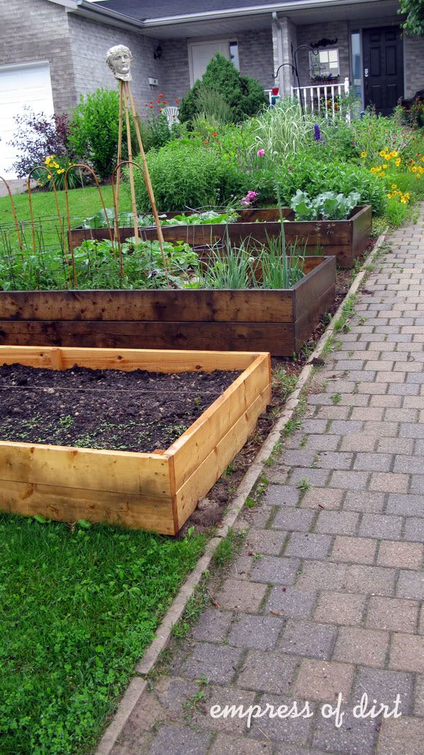 front yard vegetable gardens    raised beds