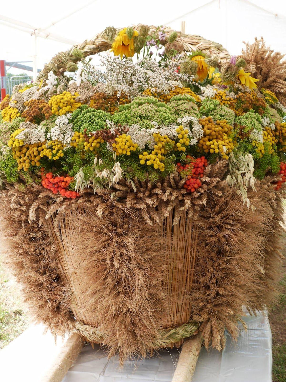 Pin By Jolanta Gorzynska On Dozynki Fall Wreath Wreaths Plants