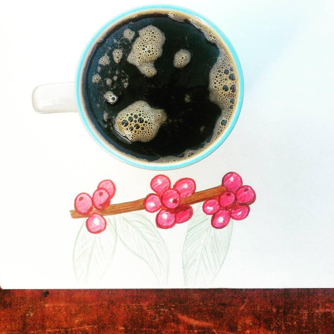 Drawing #coffee berries while sipping on #morningcoffee. Have a beautiful weekend. ☕ #coffeetime #artsnacks #sundayvibes #sundaymorning #sundayfunday #havecoffeewilltravel
