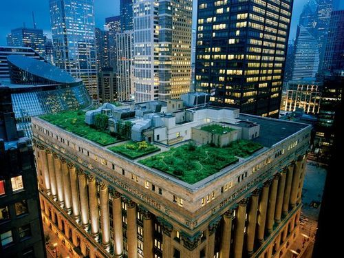 A Garland Of Nature Crowns Chicago S City Hall Softening The Hard Edges Of A Town Famous For Steel And Stone And Lo Places In Chicago Chicago City Roof Garden