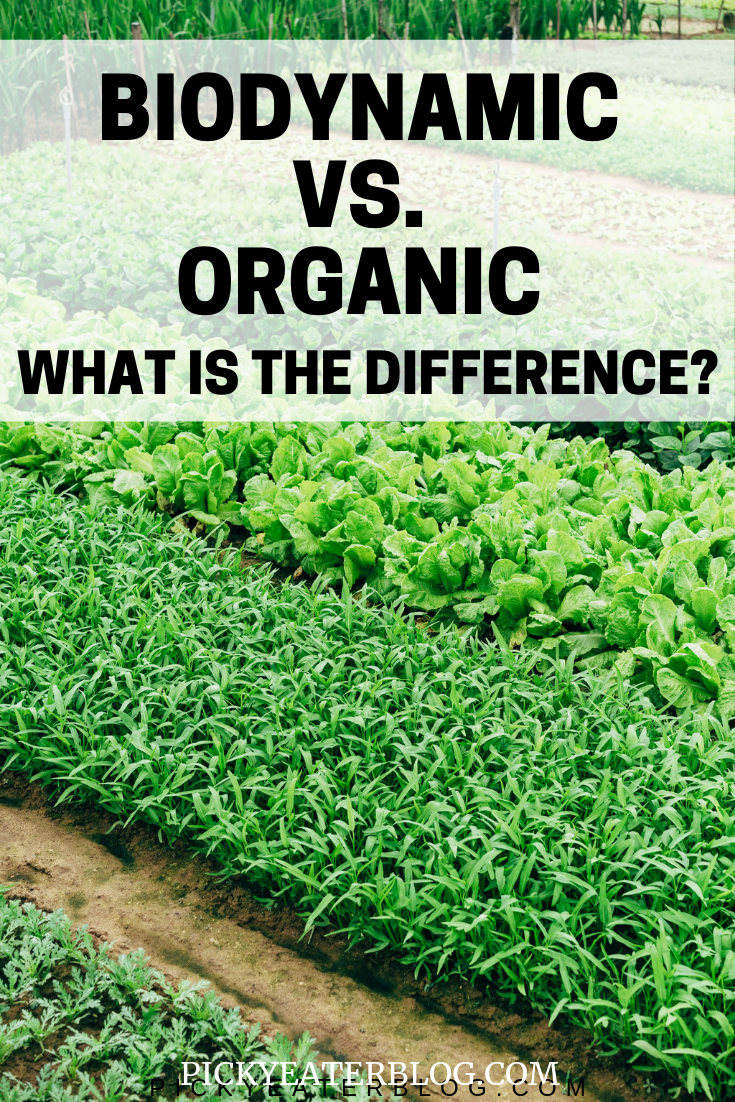 What exactly is biodynamic farming This post breaks down the benefits as well as the differences between biodynamic farming and organic farming