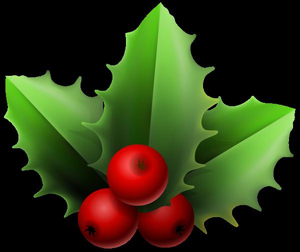Christmas Mistletoe Png Clipart Image Christmas Clipart Christmas Holly Christmas Tree Decorations