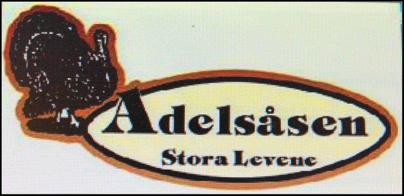 Samarbetspartner i Teaterladan i Larv http://www.adelsasen.se