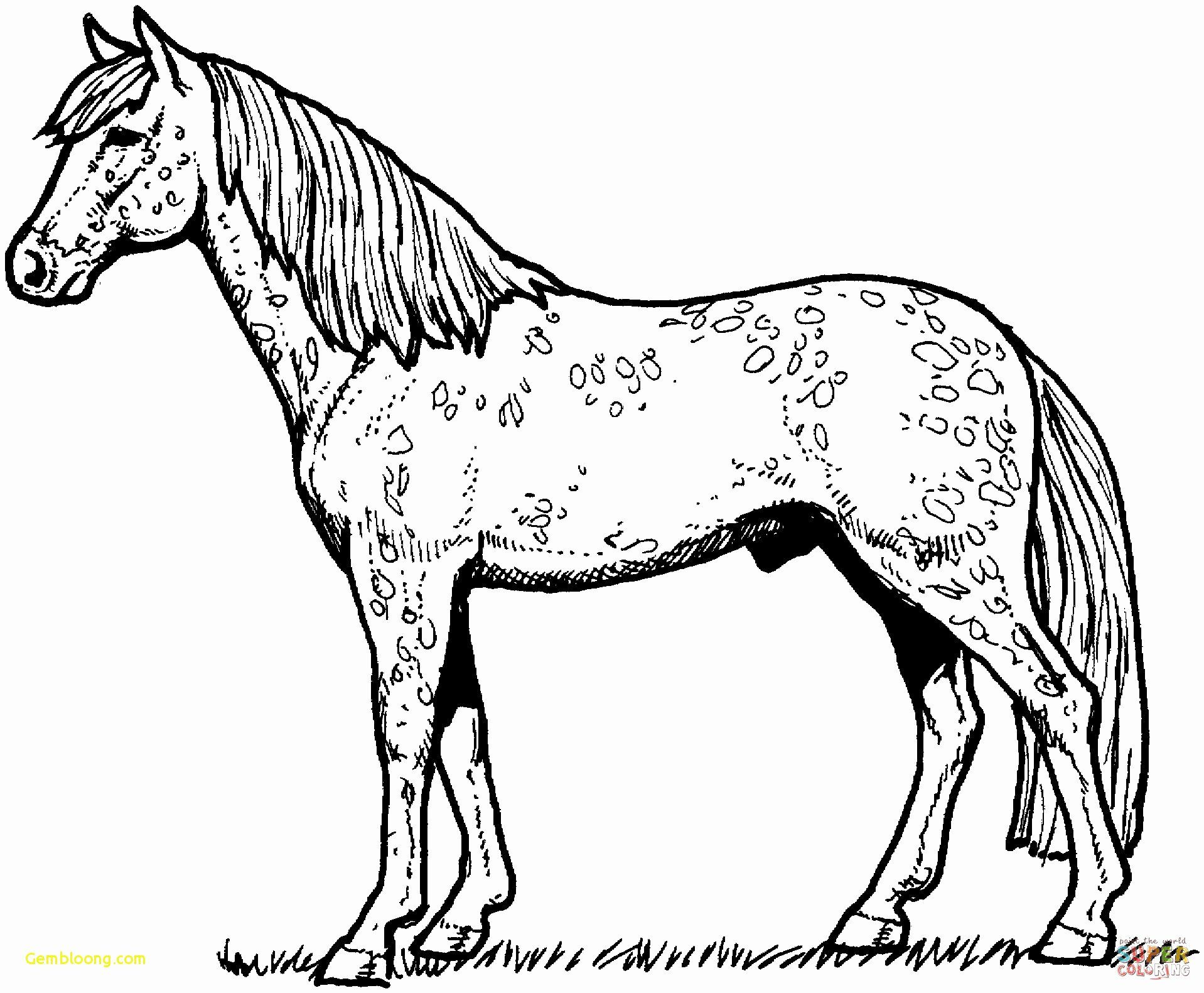 Carousel Horse Coloring Page In 2020 With Images Horse