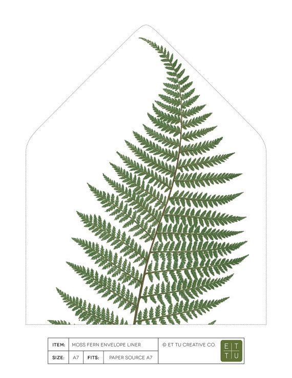 Botanical Fern Envelope Liner Printable  A Euro Flap  Diy