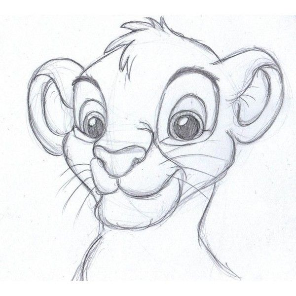 Disney Sketch Simba The Lion King My Drawings Liked On Drawing King