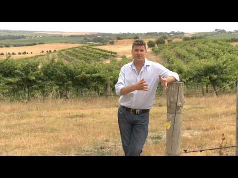 McLaren Vale, narrated by Aussie winemaker from Rosemount Est.  Great footage on the region, short and sweet...