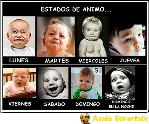 Estados De Animo Segun El Dia De La Semana Funny Pictures For Kids Funny Baby Images American Funny Videos