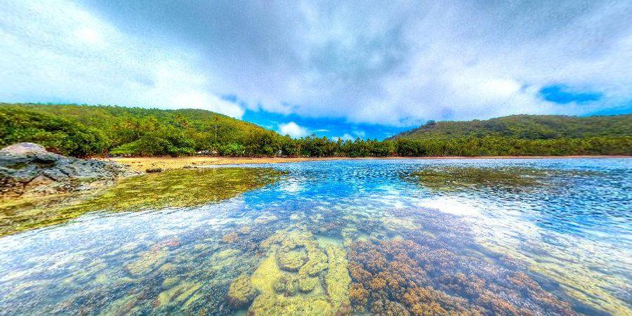 Coral Gardens at Naigani Island from Fiji