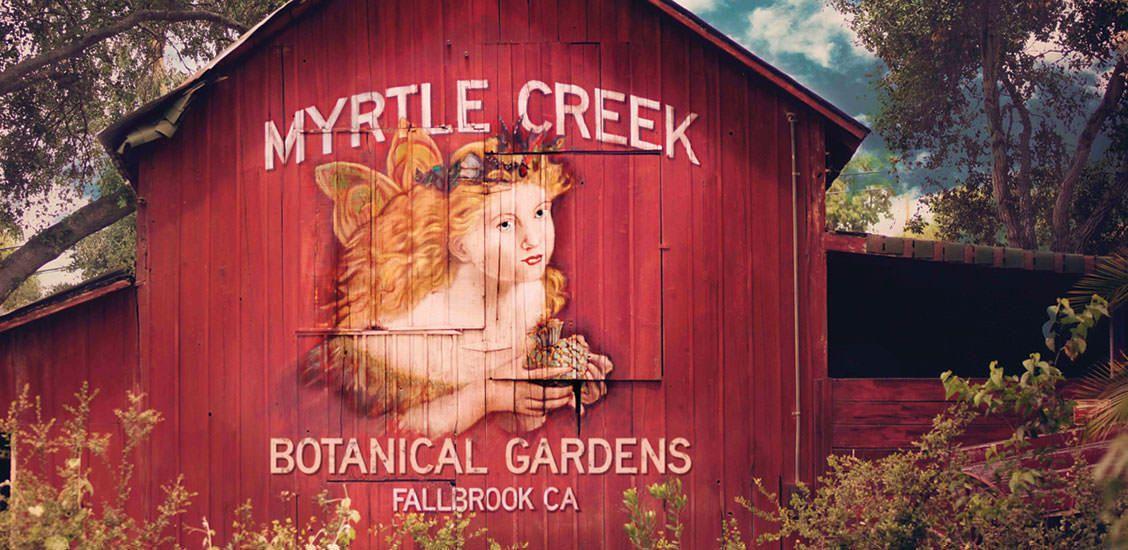 068d71e4ce69f662fec1d595bd671045 - Myrtle Creek Botanical Gardens & Nursery Fallbrook Ca