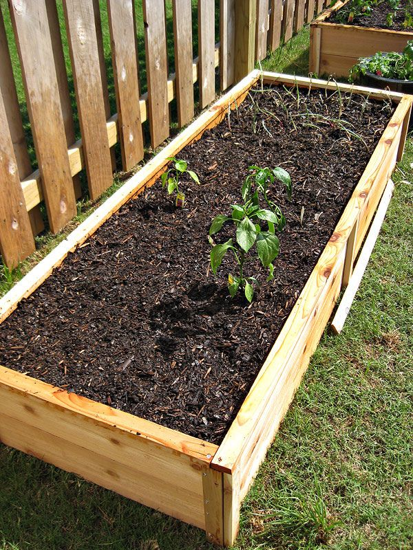 Ten Dollar Cedar Raised Garden Beds Raised garden, Diy
