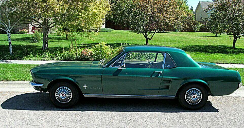 Ford Mustang Ford Mustang Mustang 1971 Ford Mustang