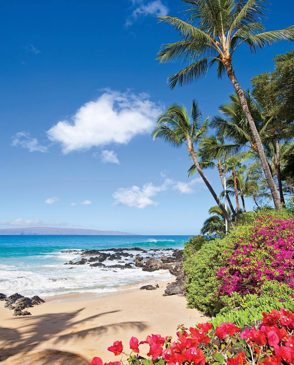 Maui Hawaii Beaches: Best Beaches To Visit, Hawaii Pictures, Beach