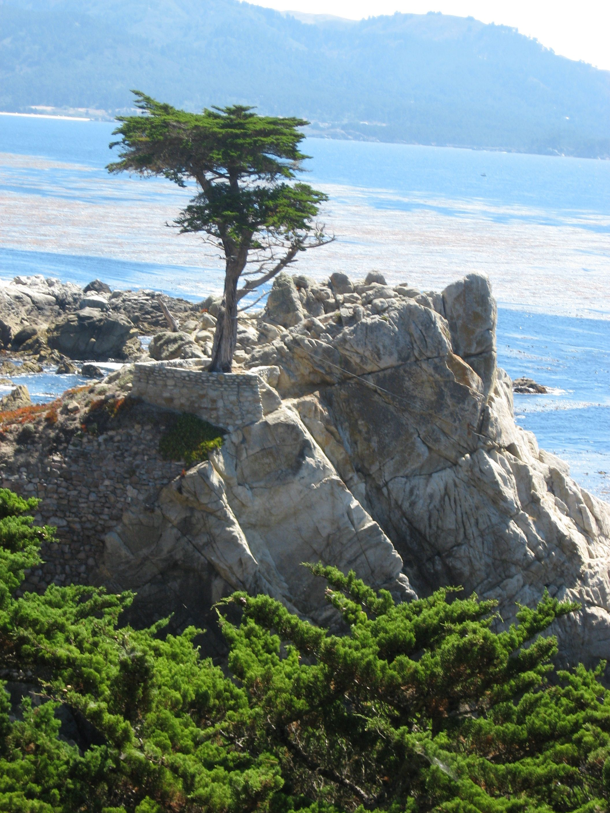 Monterey Ca Bucket List Places Ive 17