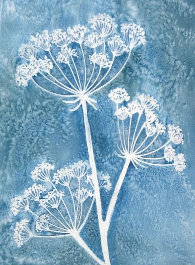 Lovely Pauline Townsend Silk Print Peinture Fleurs Linogravure