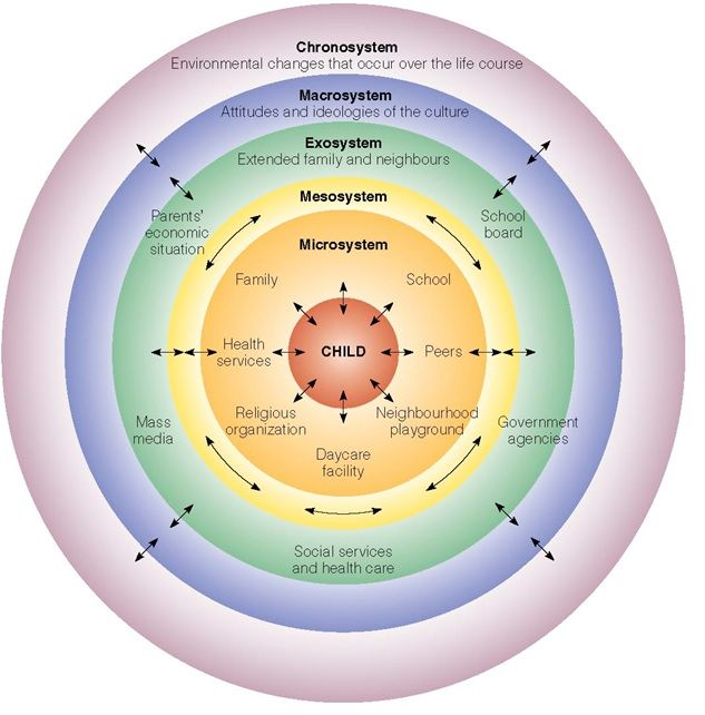 2 Bronfenbrenner S Model Of Social Ecology Is A Visual Representation Of A Child S Spheres Of Social Work Theories Child Development Theories Systems Theory