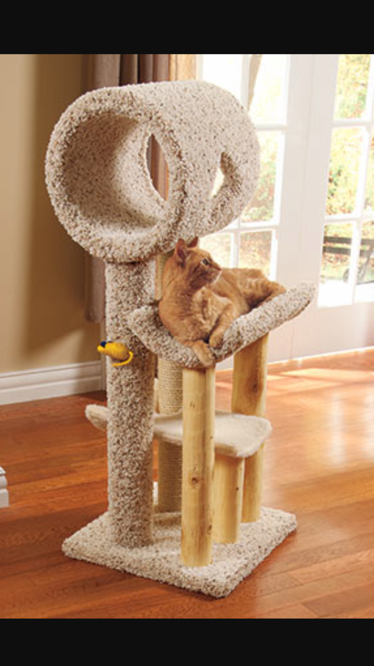 Pin by CatandKittenLand on Cat tree houses