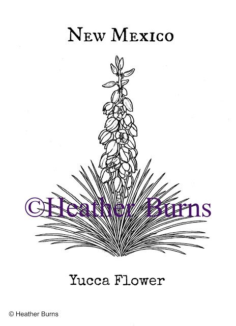 New Mexico Yucca Flower Coloring Page Flower Coloring Pages