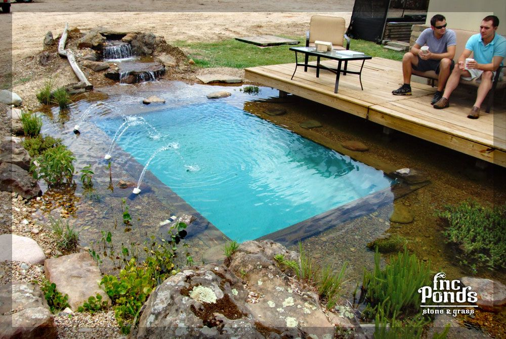 Landscape Pond Waterfall Ideas For Your Backyard Plano County Tx Fncponds Natural Swimming Pools Natural Swimming Ponds Backyard Pool