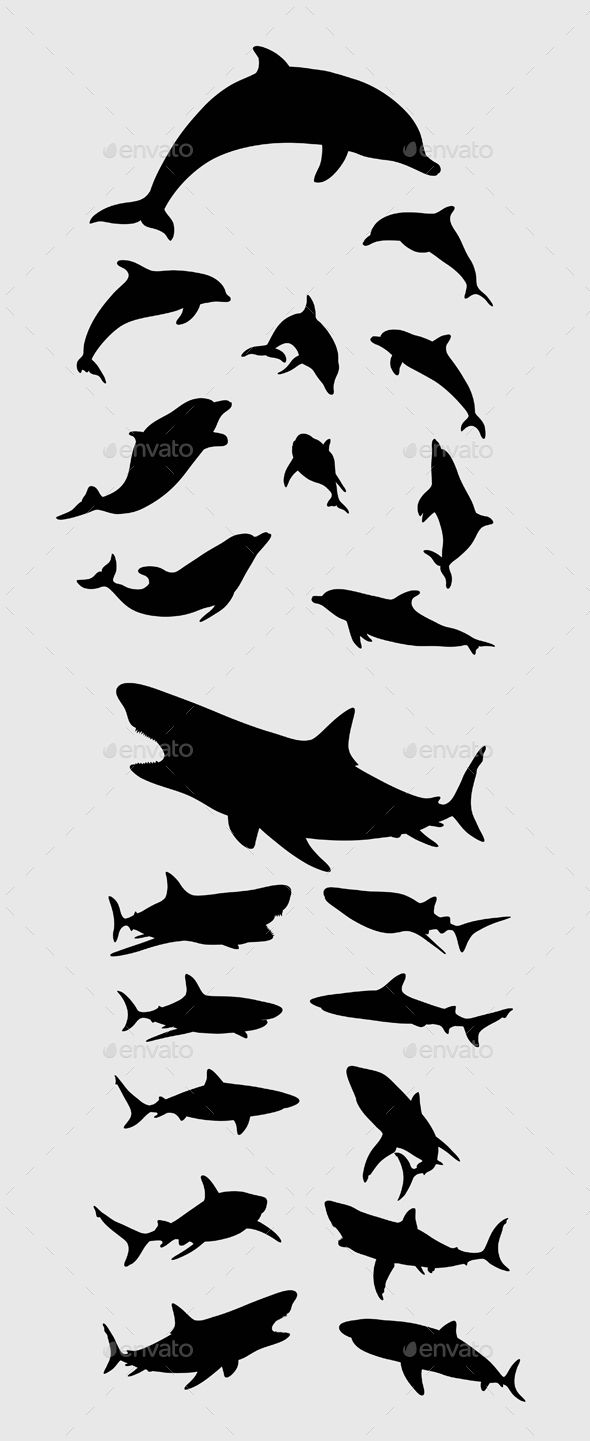 Dolphin and Shark Silhouettes | Pinterest | Shark, Silhouettes and ...