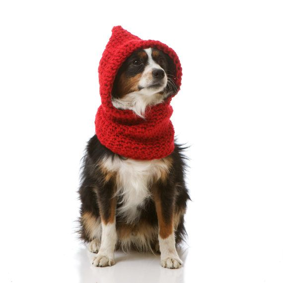 Hoodwinked... Red Riding Hood Slouchy Hooded Sweater Cowl for Dogs ...