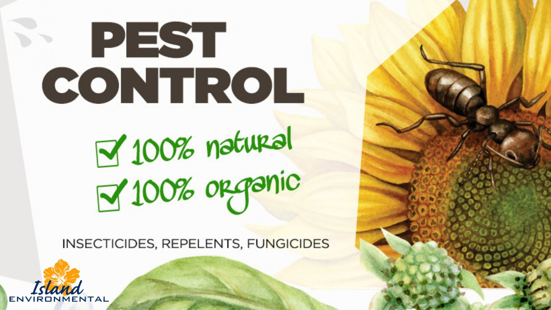 When You Need A Professional Team To Eliminate Pests In Your Residence Or Commercial Facility Contact Island Environmental Pe Pest Control Organic Insecticide Mosquito Larvae