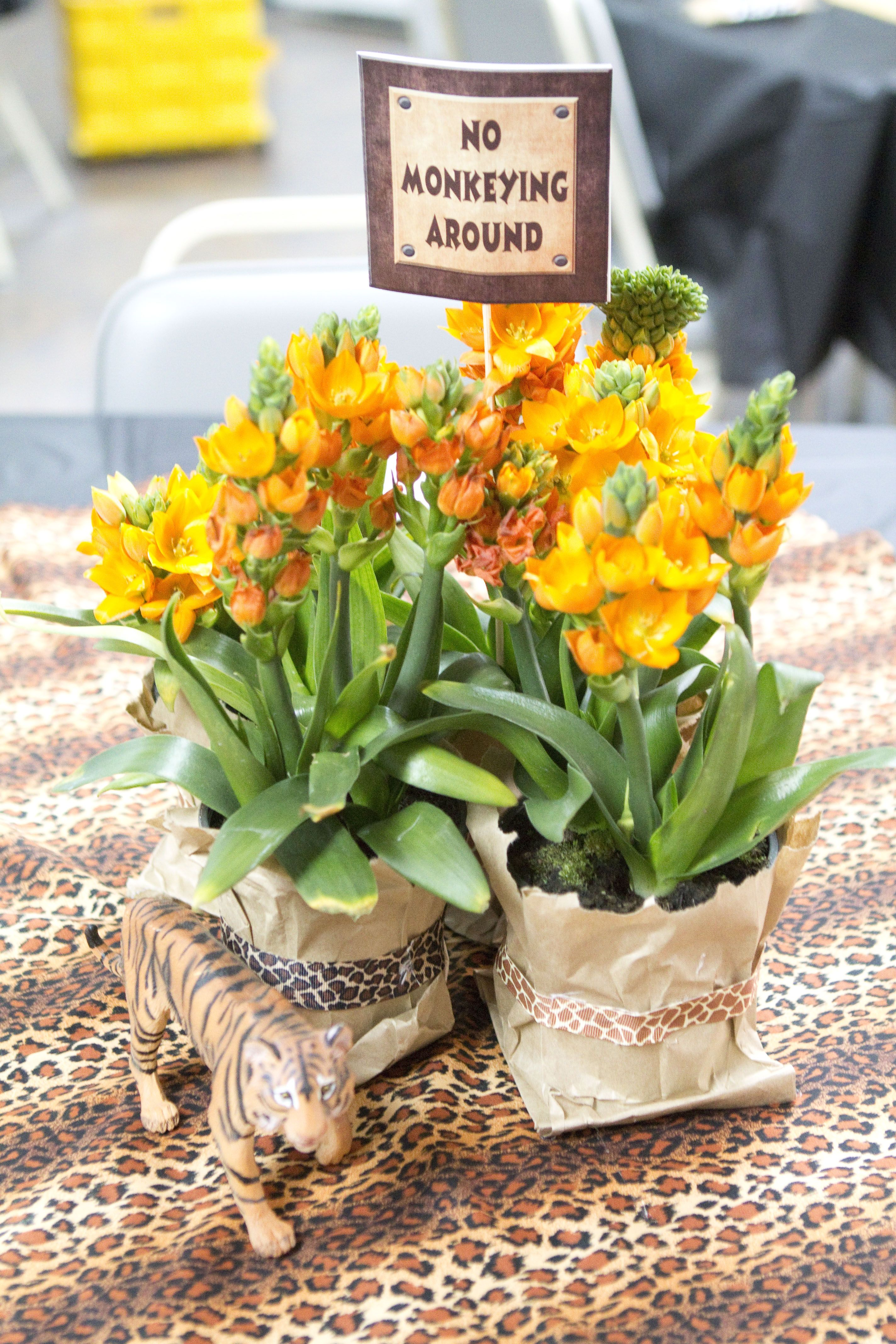 Jungle Themed Centerpieces Wild One Party Pinterest