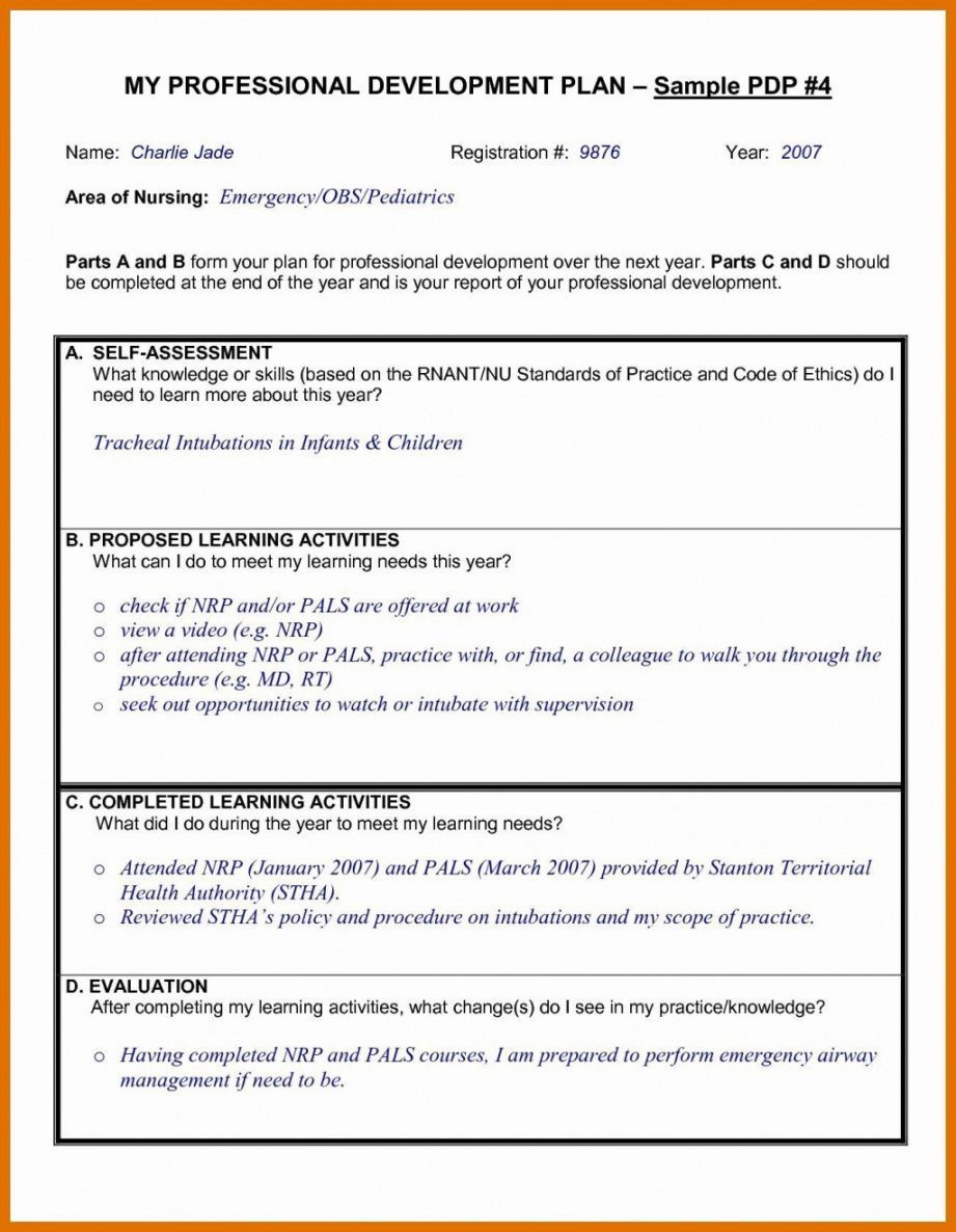 Professional Development Proposal Template in 8  Professional