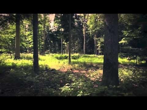 ▶ Scarlet's Walk - Flowers In My Soul - YouTube