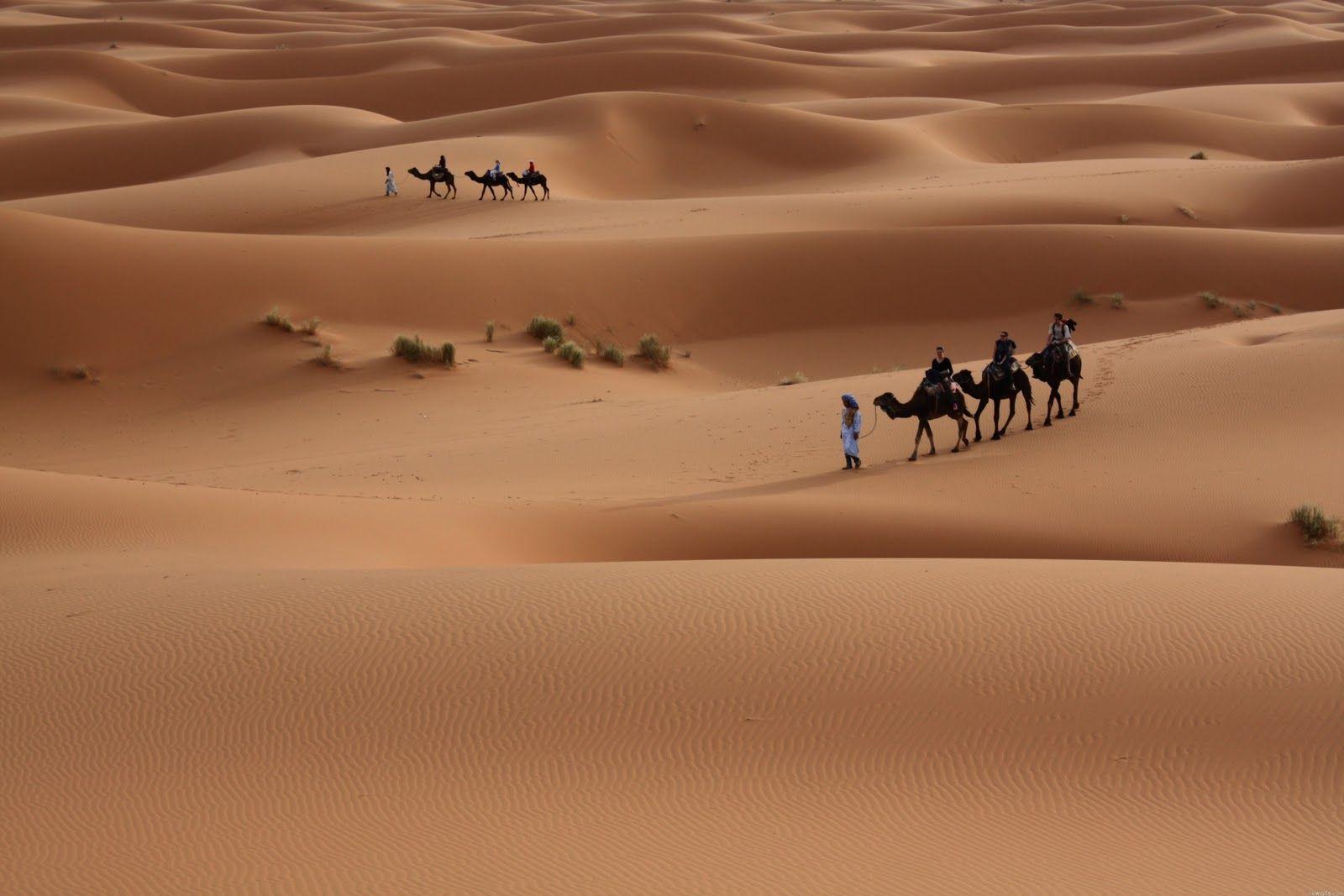 Wallpapers Hd Desert Hd Wallpaper Fond D Ecran Desert Hd Wallpaper Desert Tour Desert Life Tourist Spots