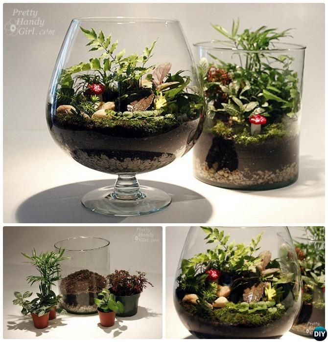 10 DIY Mini Fairy Terrarium Garden Ideas and Projects Terrarios
