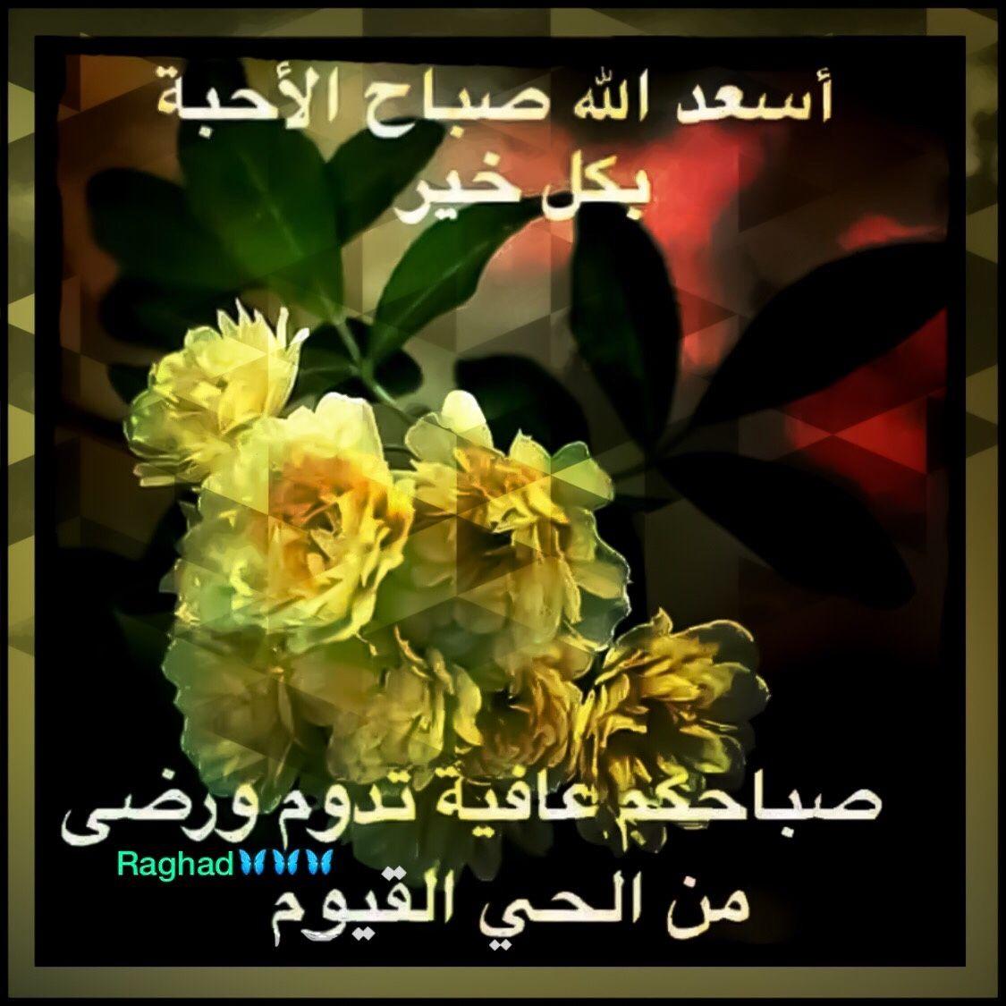 Desertrose ولسوف يعطيك رب ك فترضى حفظكم الله ورضي عنكم وأرضاكم Beautiful Blooms Desert Rose Good Morning