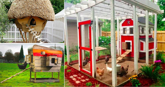 30 poulaillers originaux pour des ufs frais et des poules heureuses animaux frais et poules. Black Bedroom Furniture Sets. Home Design Ideas