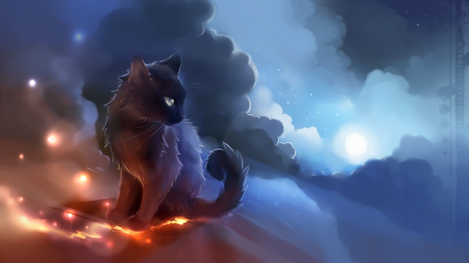 1920x1080 Warrior Cat Wallpapers Backgrounds 56 Images Warrior Cats Cute Anime Cat Cat Background