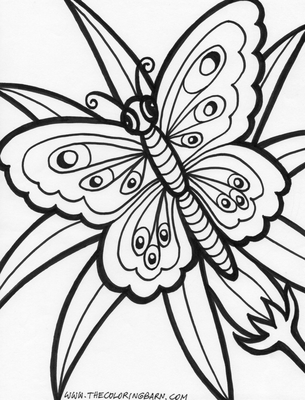 Coloring printouts flowers - Nice Two Butterflies With Flowers Color Page Free Printablegarden Check More At Http