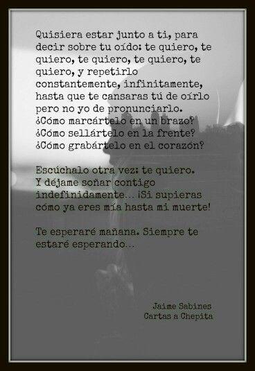 Carta a Chepita. Jaime Sabines.