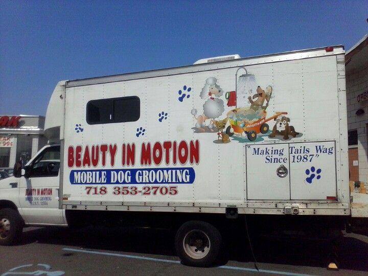 Mobile Dog Grooming Dog Grooming Shop Dog Grooming Mobile Pet Grooming