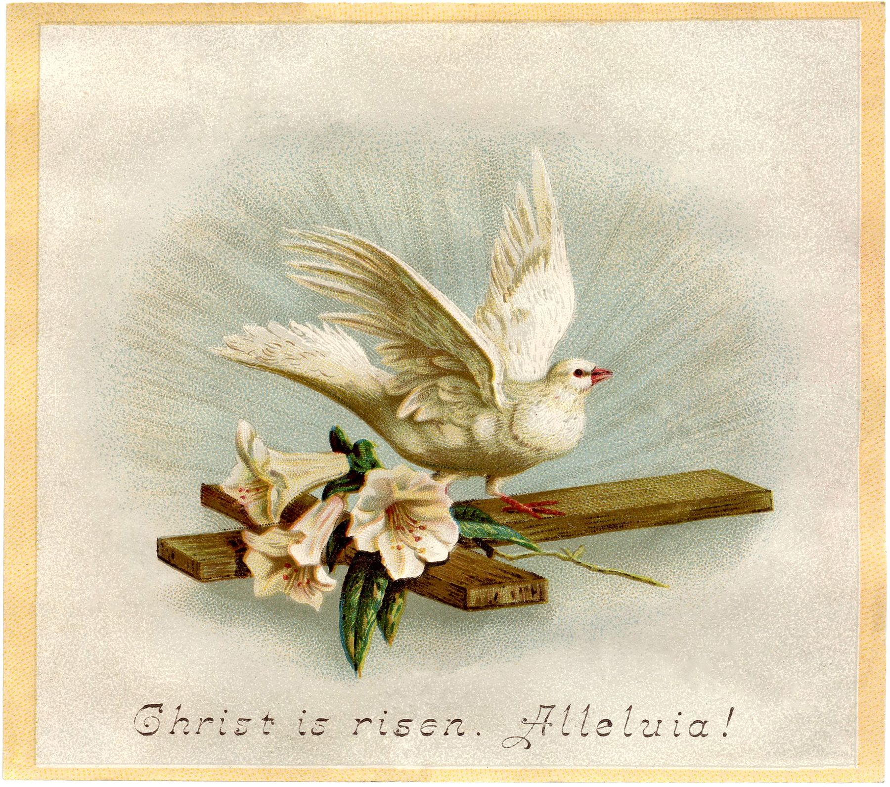 Easter-Dove-Image-Download-GraphicsFairy.jpg (1800×1591)