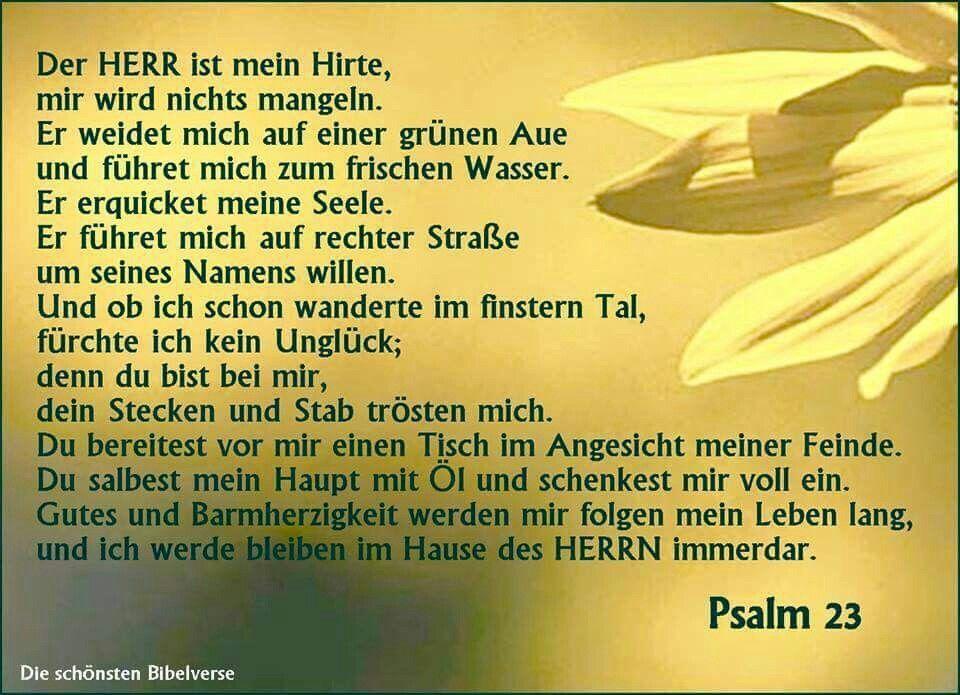 Psalm 23 Katholische Bibel